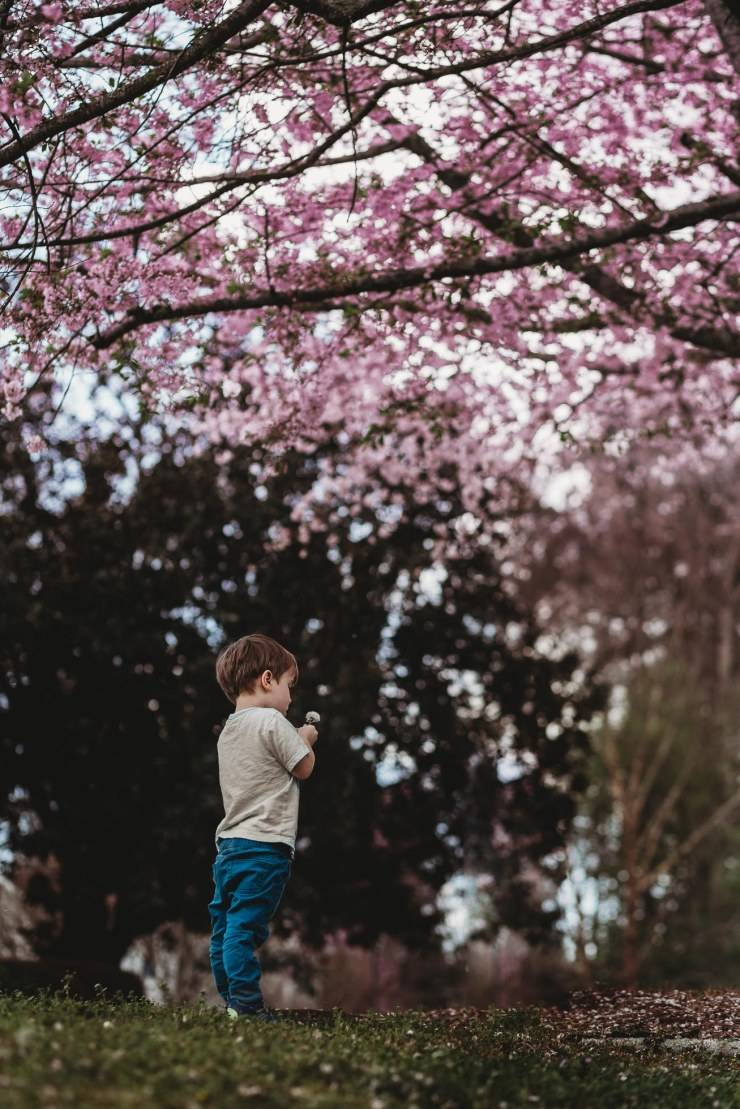 boy-in-front-of-blooming-tree-with-pink-flowers-in-georgia
